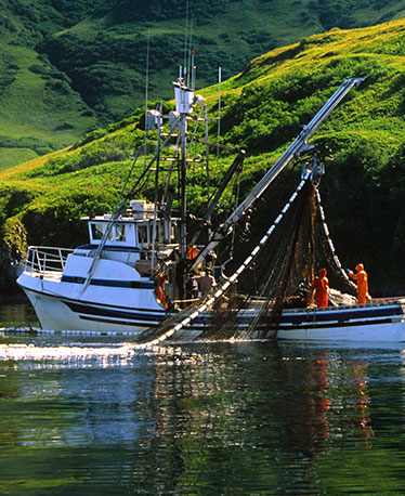 Sexton Co makes equipment for the fishing industry
