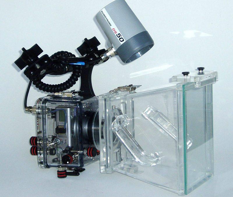 Macro Through Clear Water 2 (2006)